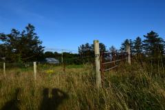Hike Sippe Krokodil Irland 2016
